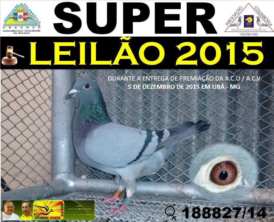 Leilão Brasil.jpg