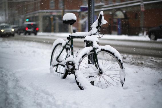 New York Snowstorm 2015 V.jpg